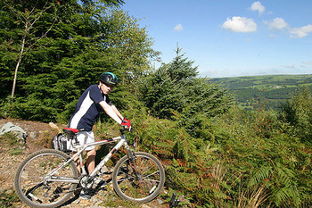 gwydyr forest biking.jpg