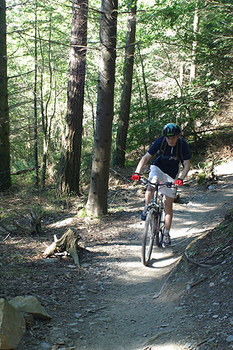 mountain biking betws-y-coed.jpg